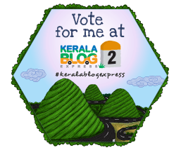 Send The Travel Mama to Kerala, India!