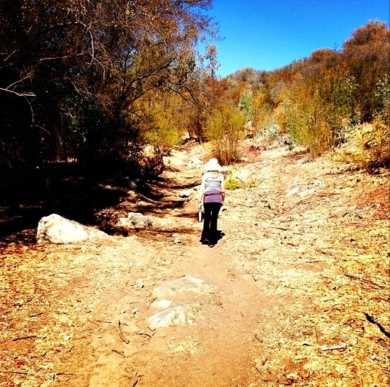 Start your New Year off right with a hike (Photo credit: Colleen Lanin)