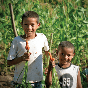 Donate to Sustainable Harvest International now!