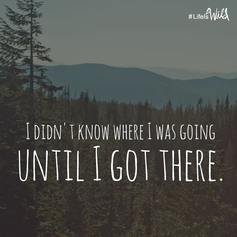 I didn't know where I was going until I got there. - Cheryl Strayed, Wild