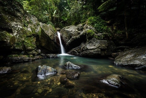 El Yunque, the only tropical rainforest in the U.S. (Photo credit: Matt Shiffler Photography, Creative Commons 2.0, Flickr)