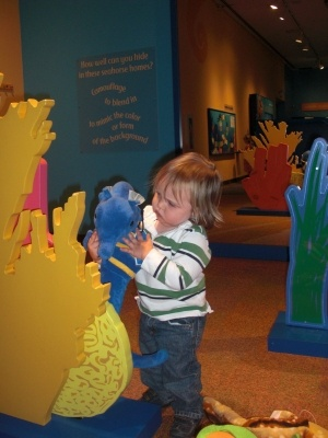 Toddler playing at Birch Aquarium in La Jolla