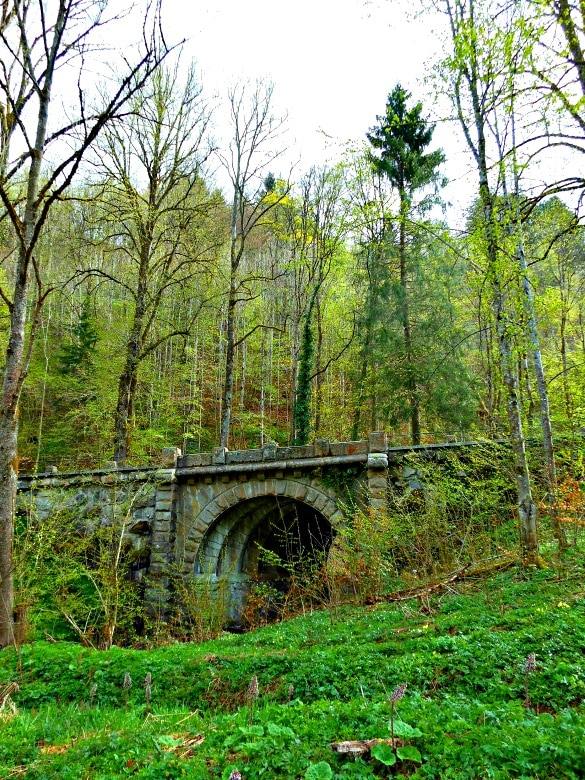 Exploring Germany's Black Forest with Viking River Cruises (Photo credit: Colleen Lanin)