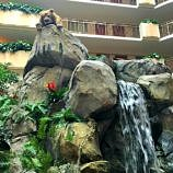 This animatronic lion delights children with its regal-sounding roar at Embassy Suites Anaheim South