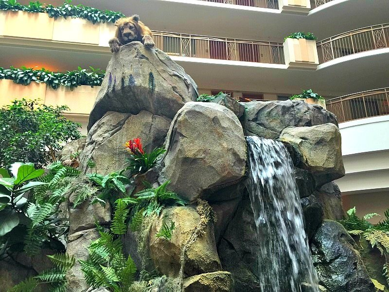 This animatronic lion delights children with its royal-sounding roar at Embassy Suites Anaheim South