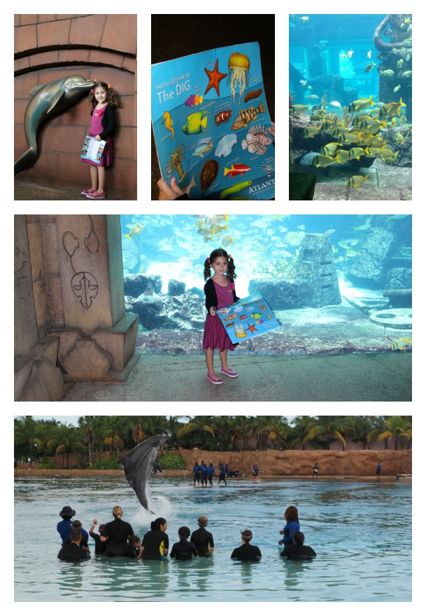 5 Things to Do on Nassau Paradise Island with Kids in the Bahamas