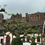 German Romance, Education and Debauchery in Heidelberg with Viking River Cruises