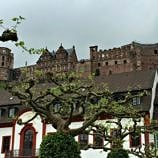 Heidelberg Castle as viewed from the city below - Heidelberg, Germany with Viking River Cruises