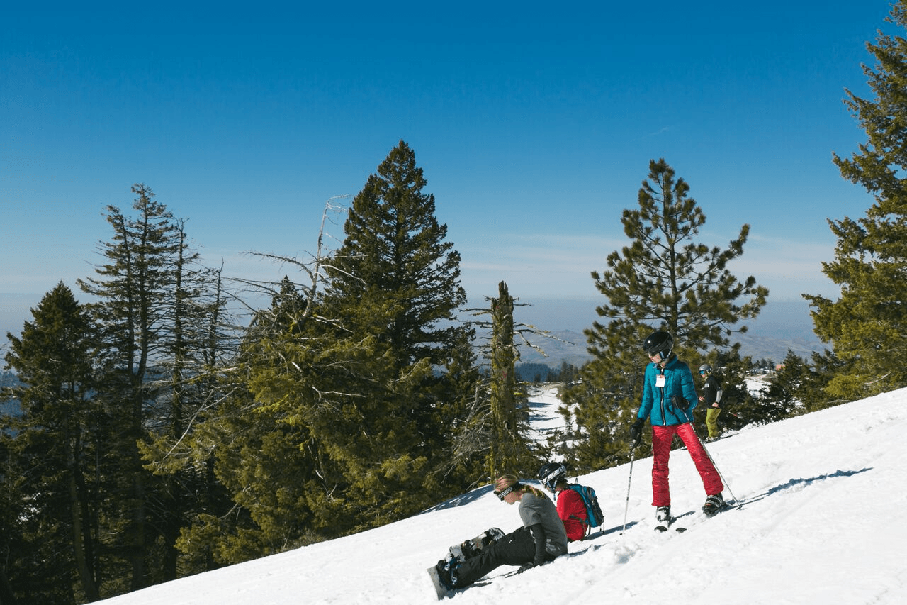 To snowboard or to ski, that is the question!