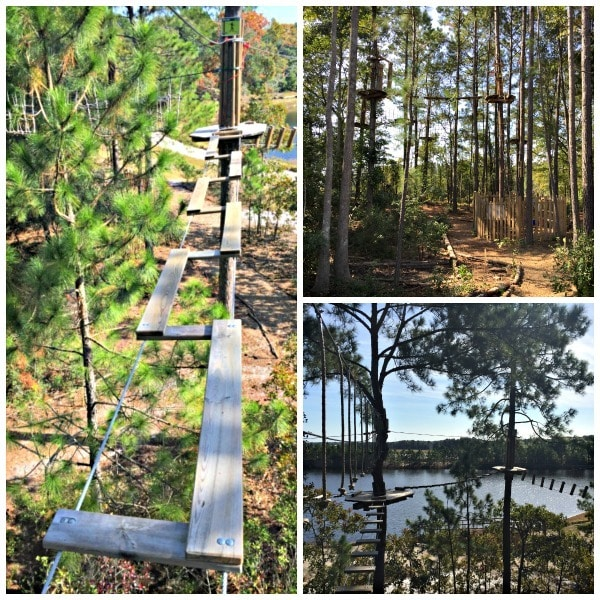 Do you dare? Monkey around on the tarzan swings and zip lines of Go Ape ~ 8 Myrtle Beach Activities and Attractions You'll Love
