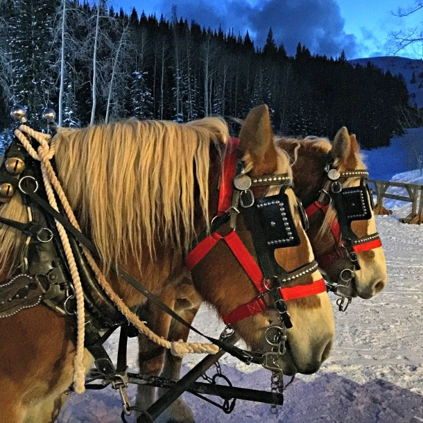 Fireside Dining experience and sleigh ride at Empire Canyon Lodge ~ Delicious Park City Restaurants for Families