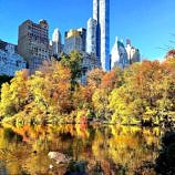The fall foliage views are stunning in New York's Central Park ~ Tips for Central Park with Kids in Winter, Spring, Summer and Fall