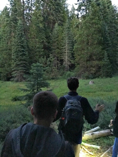 A guided Tenaya Lodge night hike is a great way to learn about Yosemite National Park