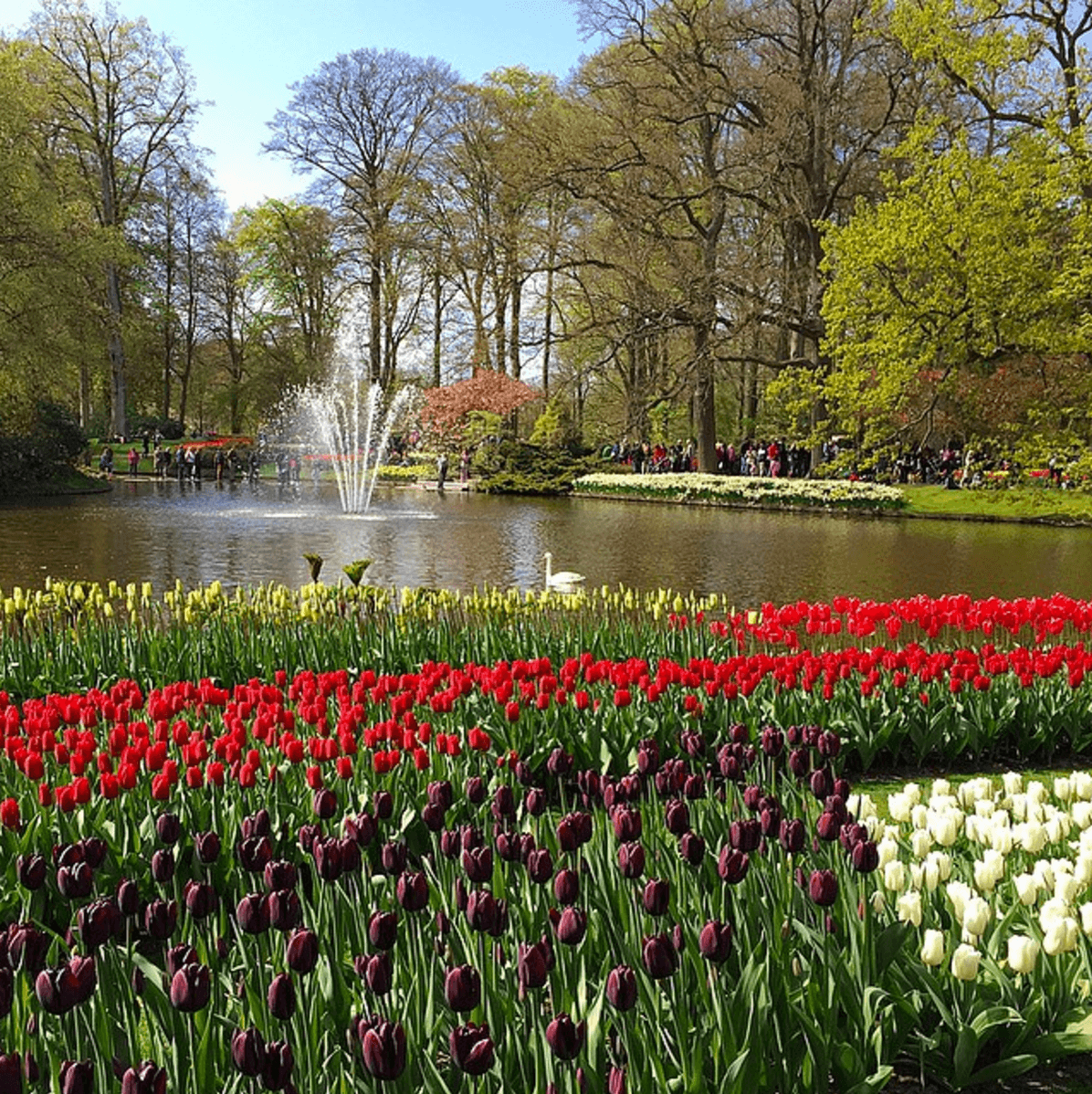 Fountains and ponds add to the beauty at Keukenhof Gardens