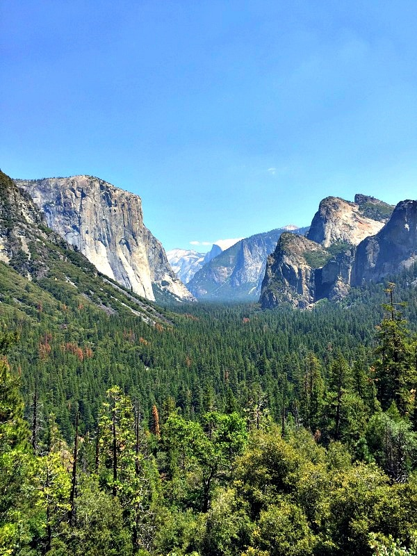 Yosemite National Park for First-Timers