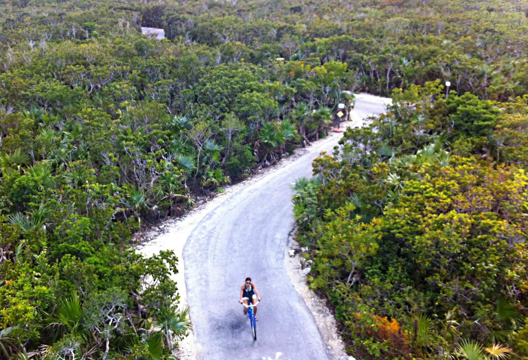 Rent a bike on Castaway Cay!