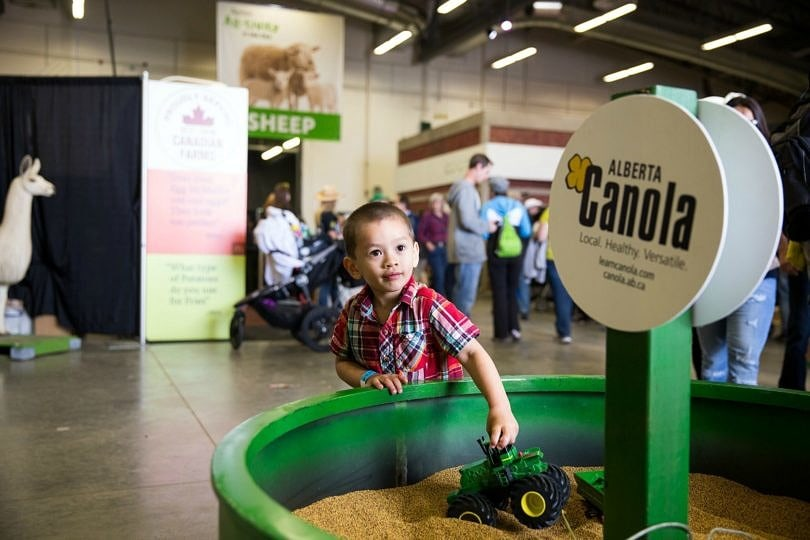 Agriculture Discovery Zone ~ Calgary Stampede with kids