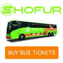 cheap bus tickets