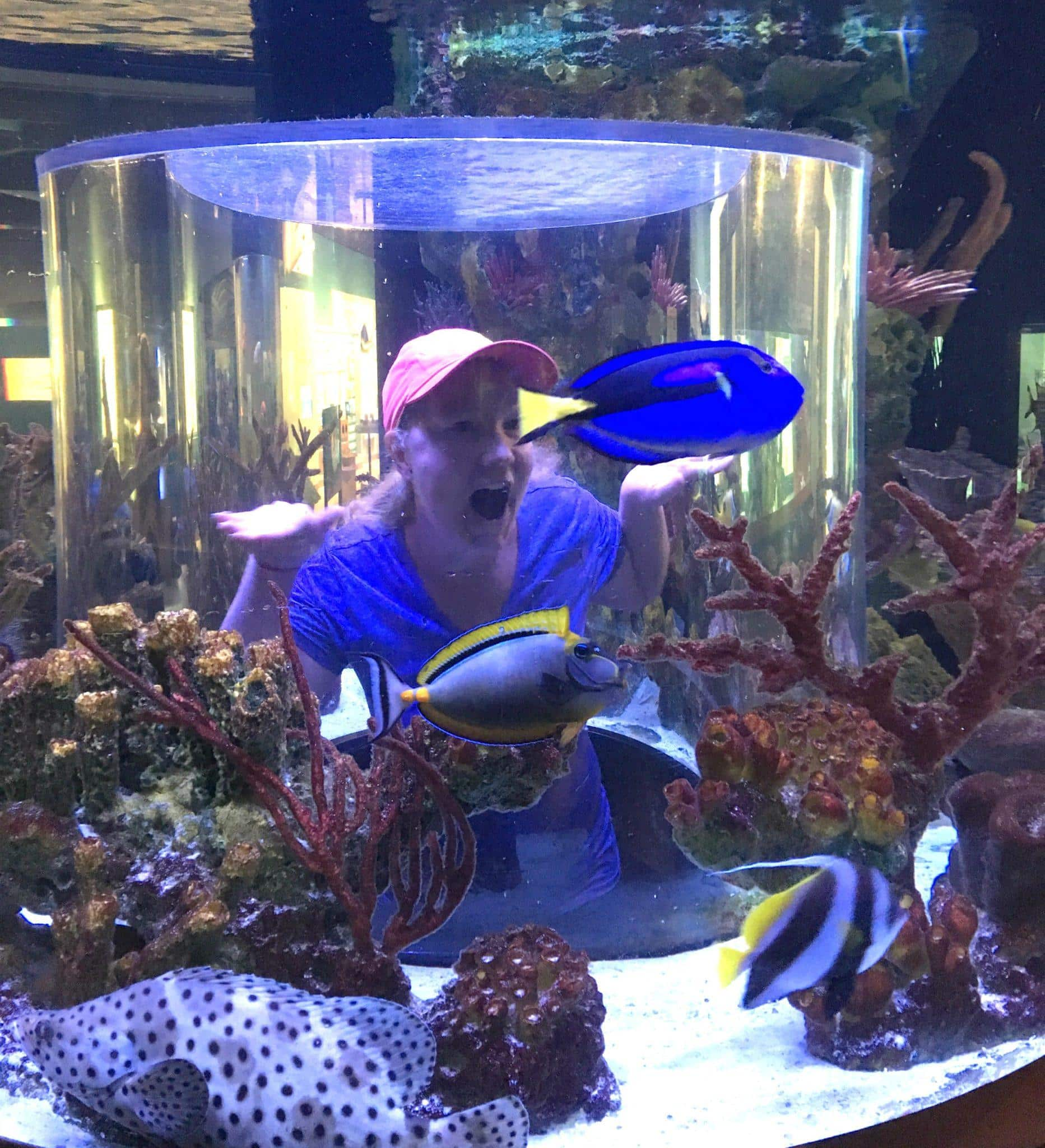 Finding Dory at the South Florida Science Center and Aquarium ~ Fun Things to Do in Florida's Palm Beach County with Kids
