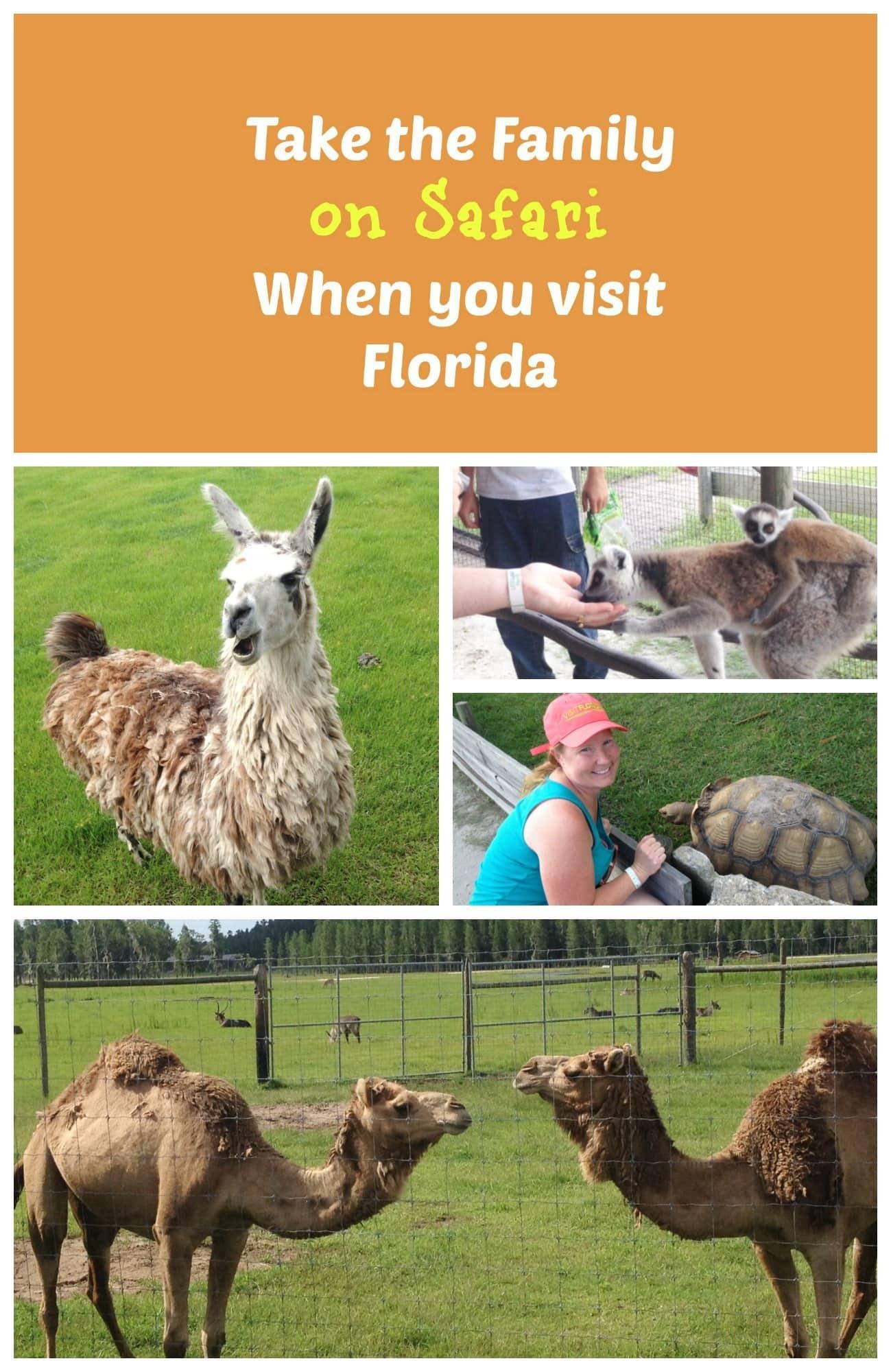 Animal encounters on a family safari in Central Florida