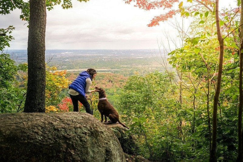 Gatineau Park ~ Why Visit Ottawa in Fall with Kids