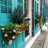 Colorful flower boxes in the French Quarter