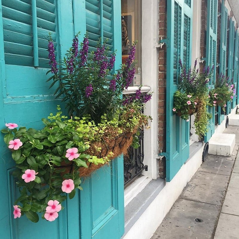 Colorful flower boxes in the French Quarter ~ 10 Ways to Find Romance in New Orleans