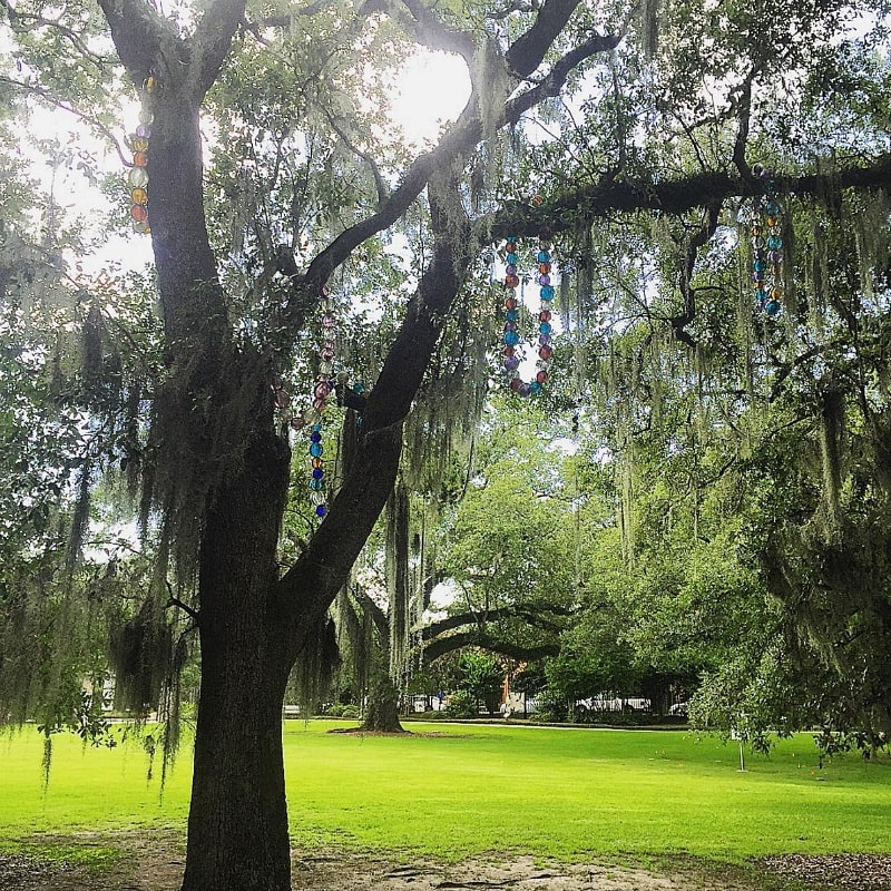 """Tree of Necklaces"" at City Park Sculpture Garden ~ 10 Ways to Find Romance in New Orleans"