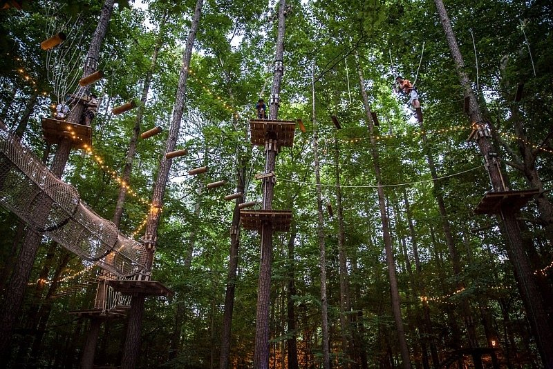 Adventure Park at Virginia Aquarium's Aerial Forest Adventure ~ Virginia Beach Romantic Getaway