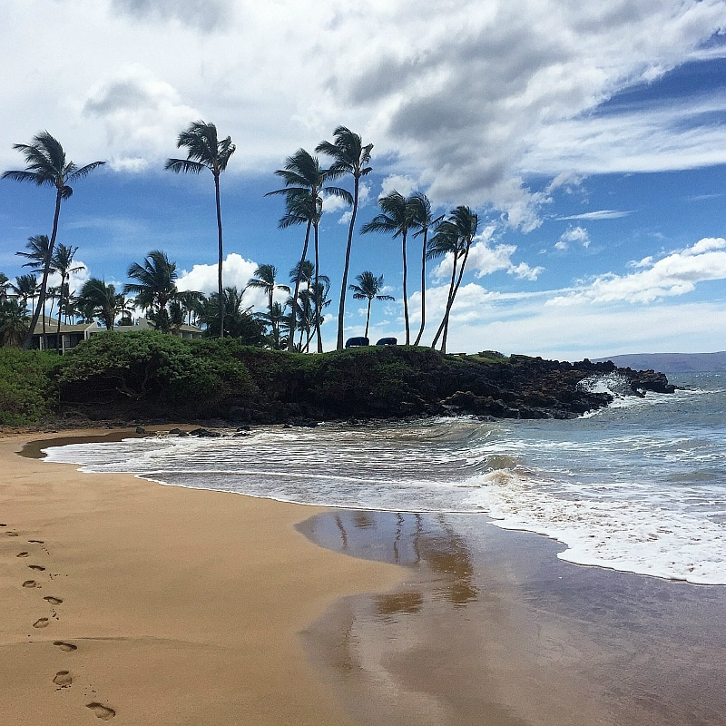 Ulua Beach is a short drive or walk away from Residence Inn Maui