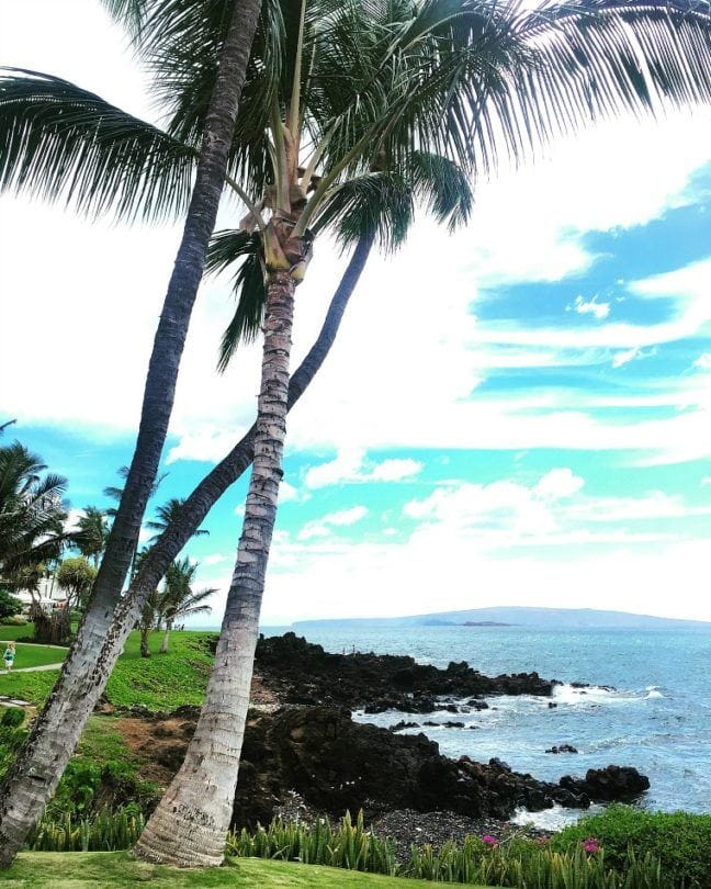 Enjoy the beauty of Maui without the hefty resort price tag when you stay at Residence Inn Maui, Wailea