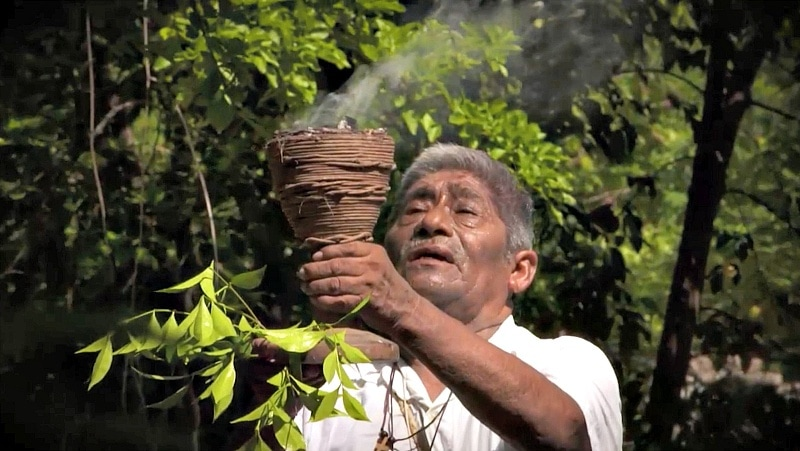 A shaman teaches the ancient Mayan tradition of collecting jungle honey (Screenshot from The Voyager with Josh Garcia)