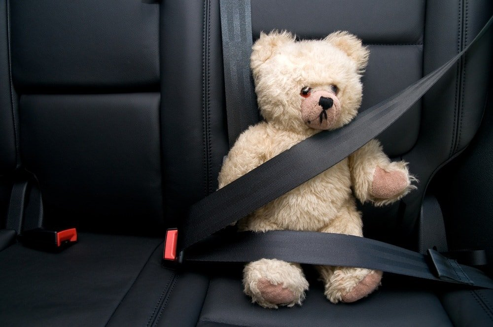 All passenger should remain seated and safely buckled throughout your journey ~ Holiday Road Trip Tips for a Festive and Safe Journey