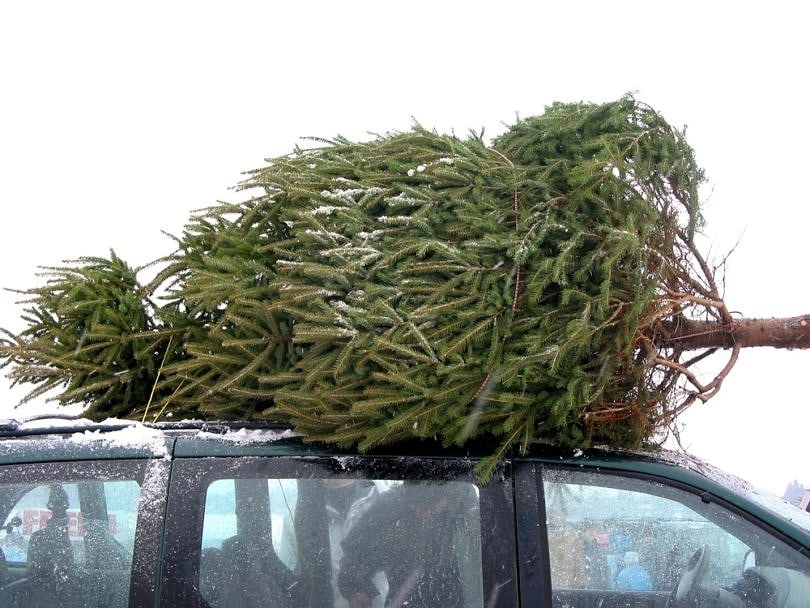 Play old school games like I Spy with a festive twist during your holiday road trip