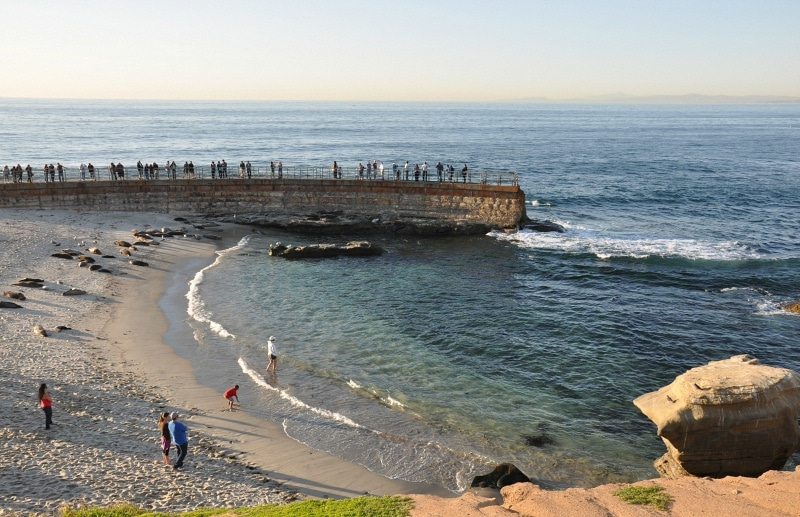 La Jolla Cove ~ 15 Best San Diego Attractions for Kids