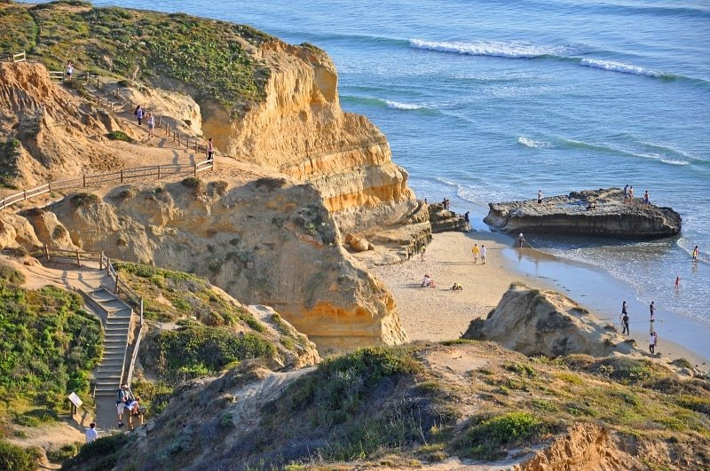 Torrey Pines State Natural Reserve ~ 15 Best San Diego Attractions for Kids