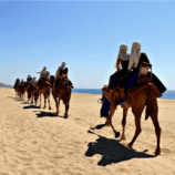 Cabo San Lucas Tours that Add Excitement to Your Beach Vacation