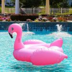 Best Pool Floats to Make a Whimsical Splash on Vacation or at Home