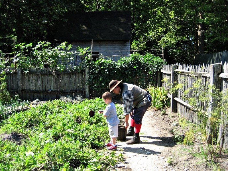Watering the American Revolution Museum at Yorktown farm garden ~ History is fun for kids