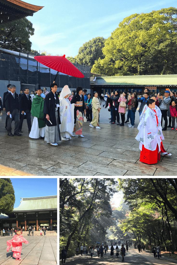 Scenes from Meiji Shrine in Tokyo