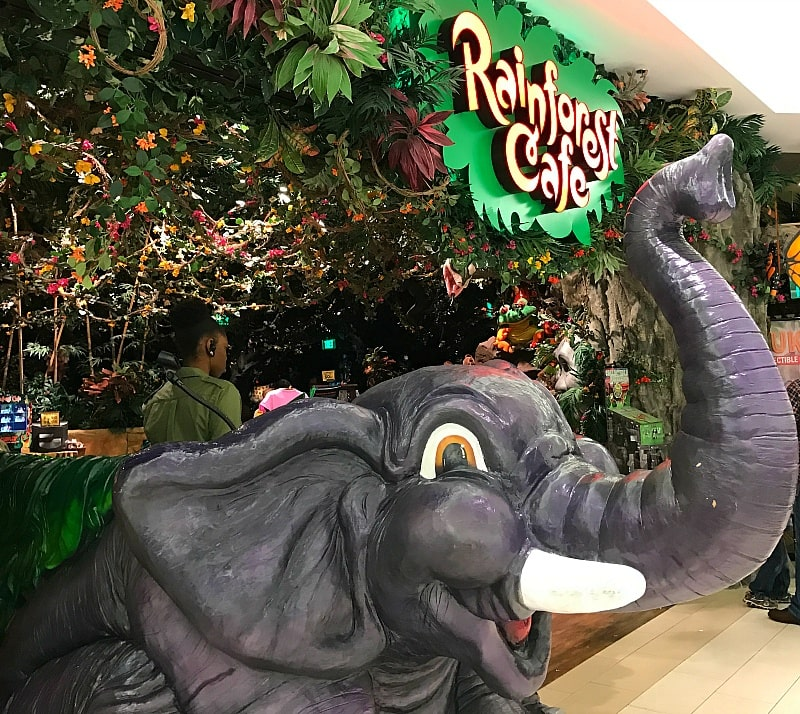 Rainforest Cafe ~ 30 Fun Things to Do at Mall of America Besides Shop