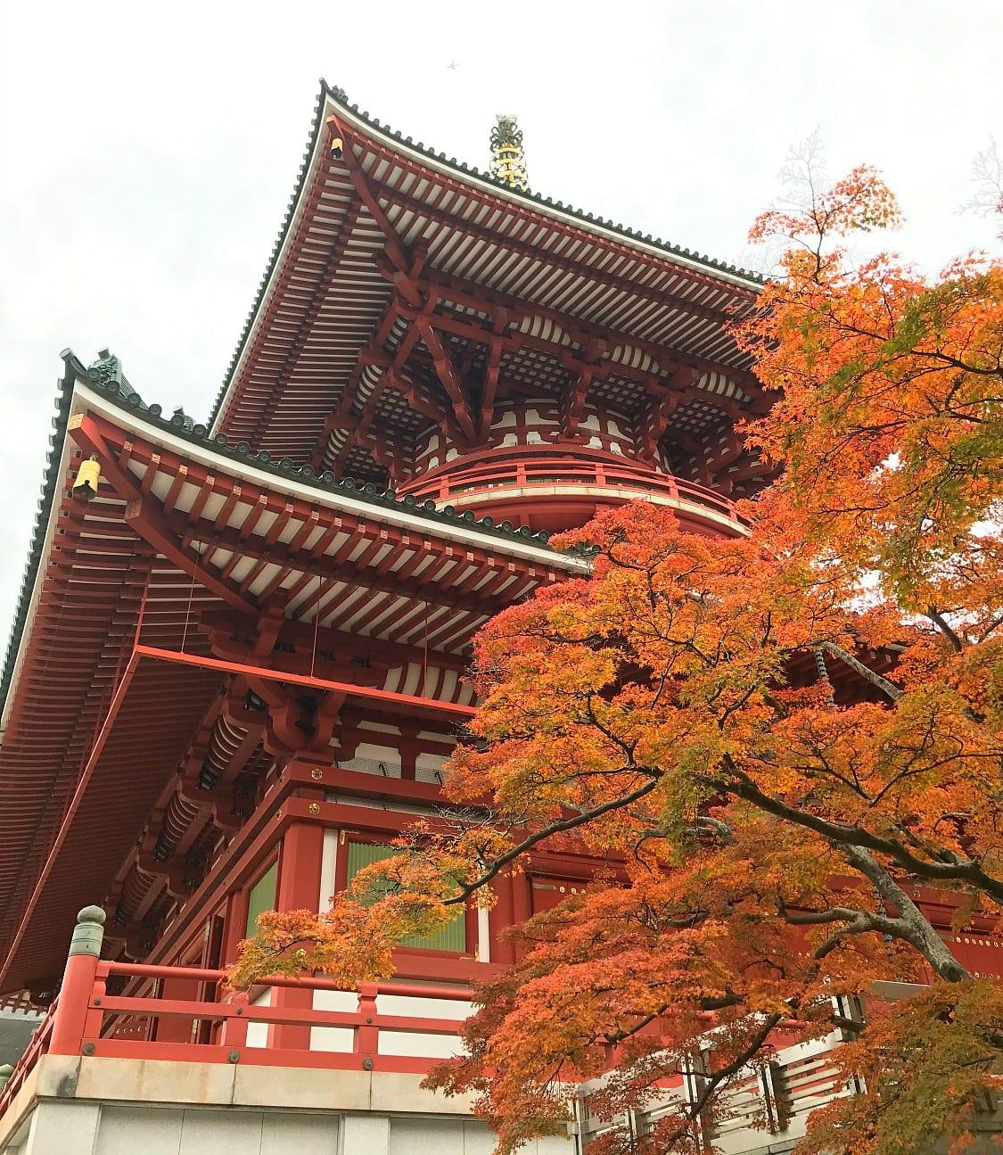 Naritasan Shinshoji Temple is a must-see in Narita ~ 5 Incredible Things to Do in Narita, Japan
