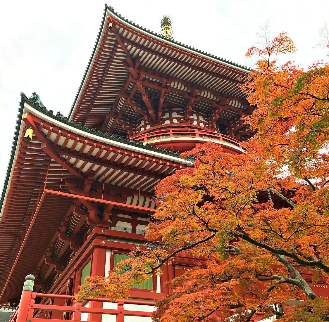 Naritasan Shinshoji Temple in Narita, Japan ~ Things to do in Narita, Japan
