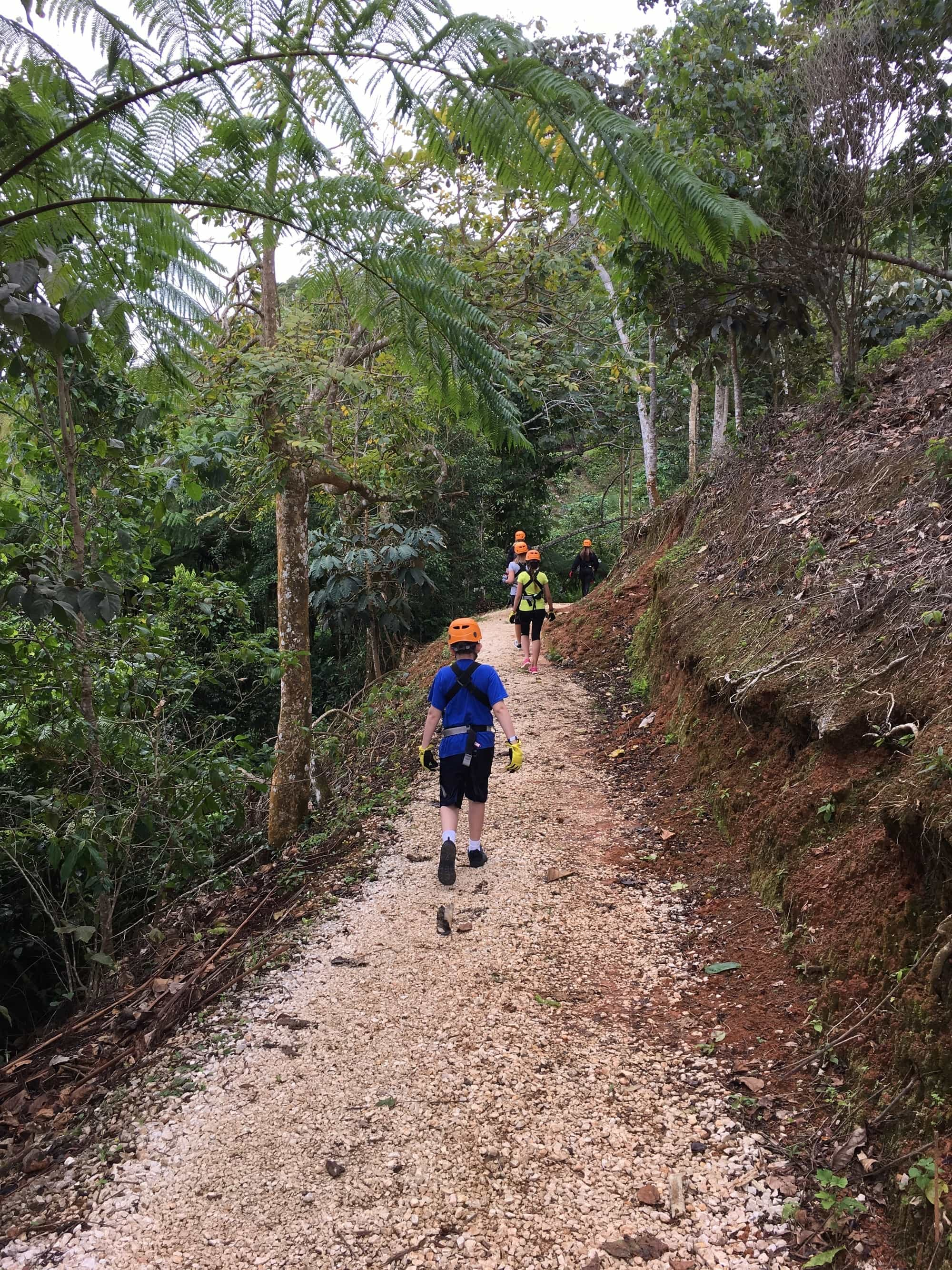 Toroverde Adventure Park hiking in Puerto Rico