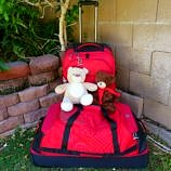 Durable Luggage for Family Travel ~ Eagle Creek Expanse Review and Giveaway