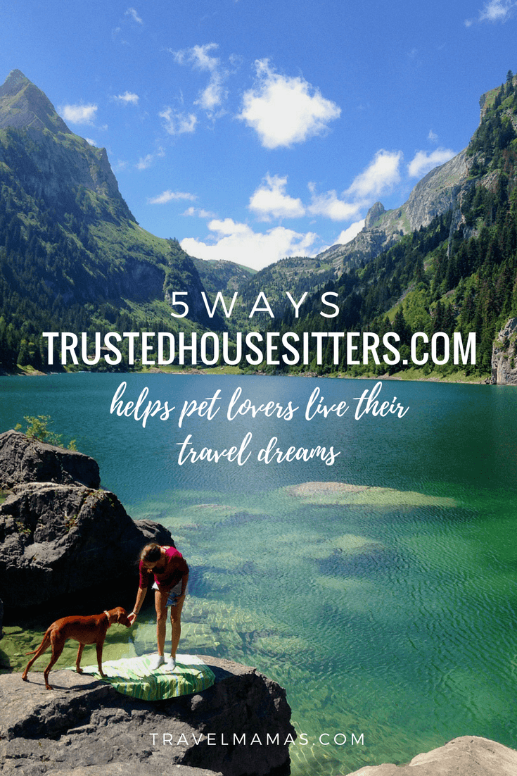 5 Ways TrustedHousesitters.com helps pet lovers live their travel dreams