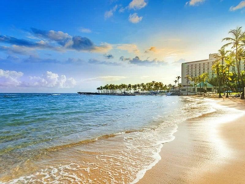 Caribe Hilton's beachfront property ~ Best Beach Hotels for Kids
