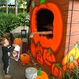 legoland california halloween activities