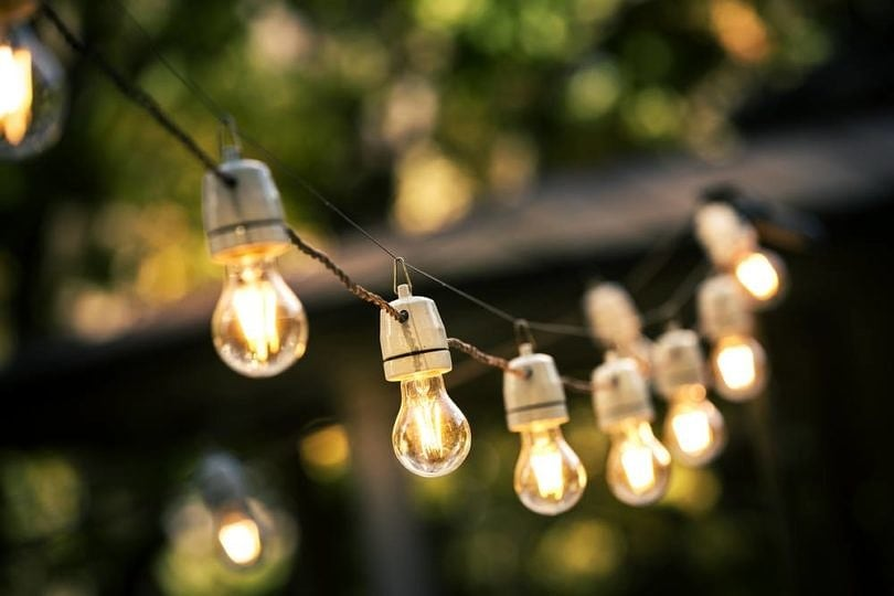 Decorative lights add to the festivity of a backyard barbecue party