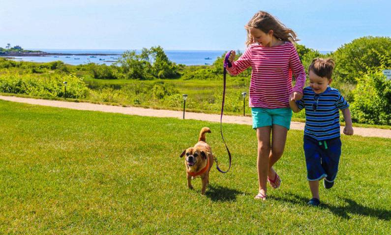 Maine's Inn by the Sea ~ Best Hotels for Pets
